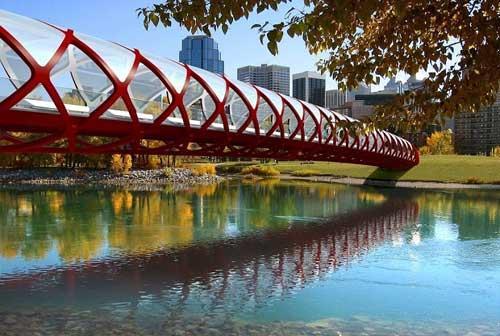 加拿大卡尔加里和平桥设计3