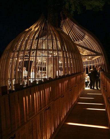 "PEL事务所设计新西兰的""树屋""餐厅1"