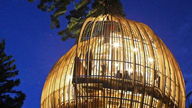 "PEL事务所设计新西兰的""树屋""餐厅2"