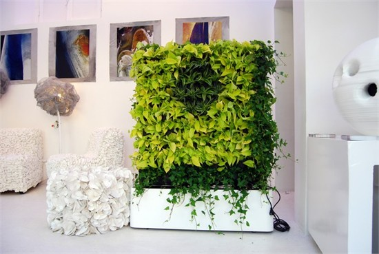 首页 设计动态 设计资讯 03让春色满屋的办公区室内绿植