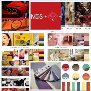NCS+戴昆联名色彩卡
